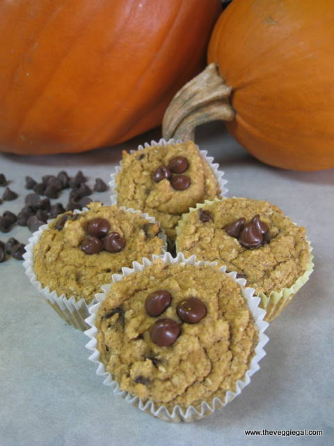 GF Choc chip Pumpkin Muffins