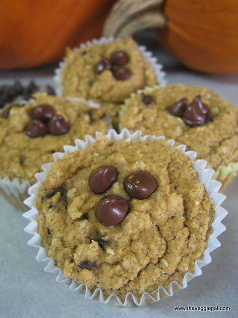 GF Chocolate Chip Pumpkin Muffins