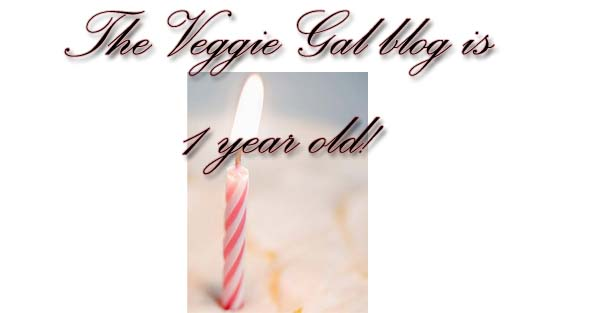 My Blog is 1 year old today!!