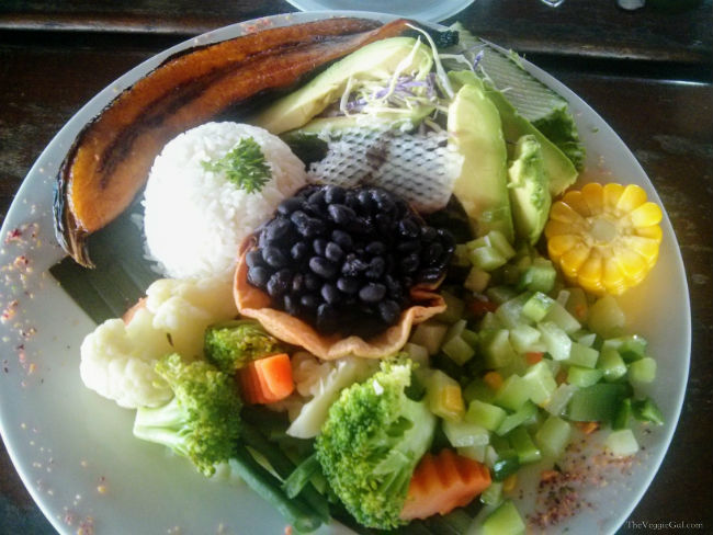 How to Live in Costa Rica as a vegan Vegan Costa Rican Meal