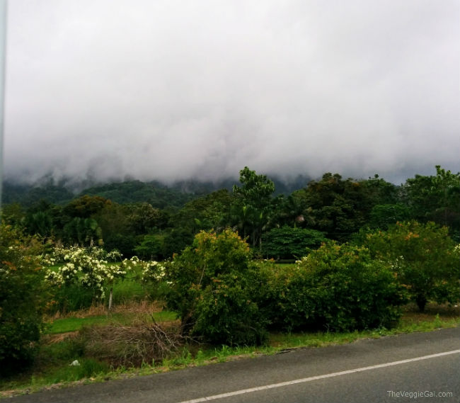 Foggy hills in Costa Rica