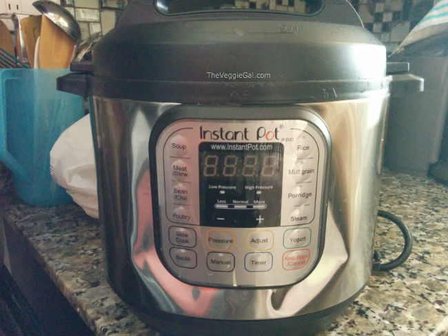 Instant pot damage from flight to Costa Rica