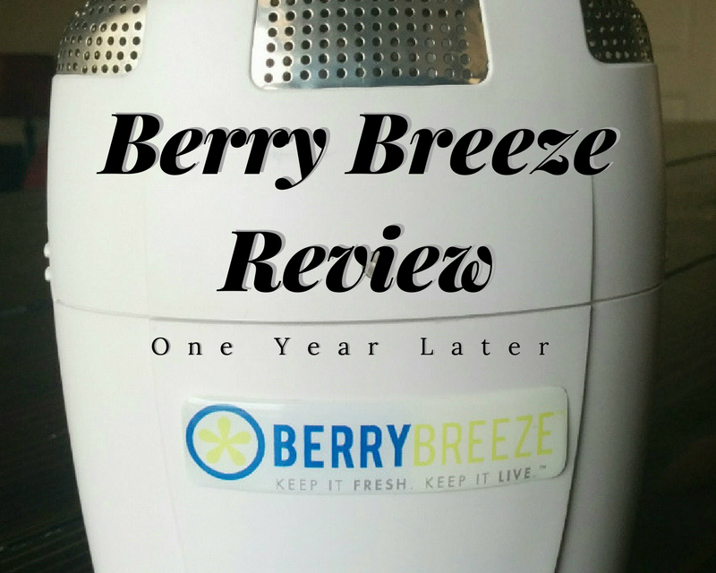 Berry Breeze Review – One Year Later
