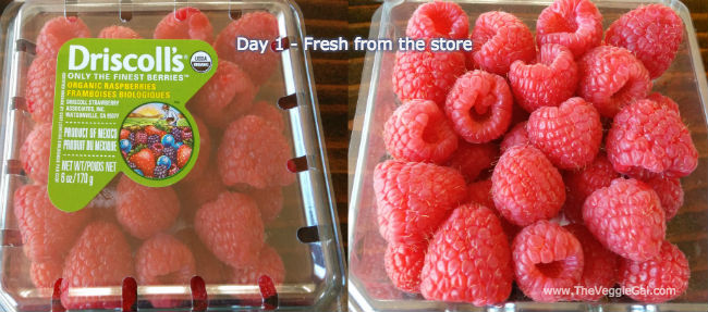 Berry Breeze Review: Raspberries Day 1