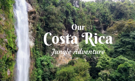Our Costa Rican Jungle Adventure