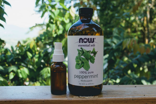 Peppermint spray in nature