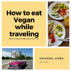 What My VEGAN FAMILY Ate In Cuba and How Much It COST