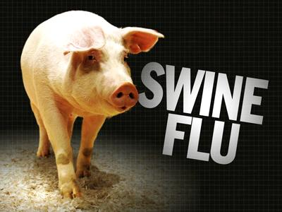 Is The FLU Caused By Eating Animals?